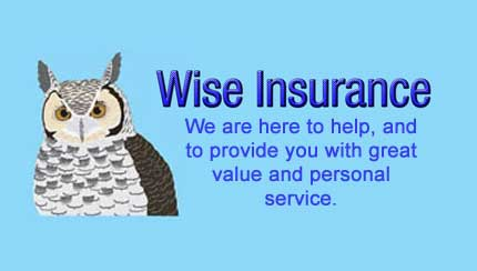 wise insurance